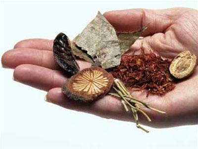 Bài thuốc cường dương bổ thận bằng thảo dược cực tốt cho nam